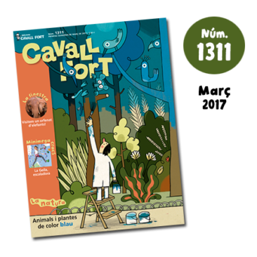 Cavall Fort 1311