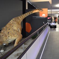 Museu de la Conca Dellà (a Isona) i Dinosfera (a Coll de Nargó)