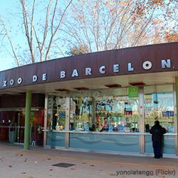 Tallers i activitats familiars al Zoo de Barcelona