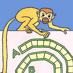 Els jocs dels micos