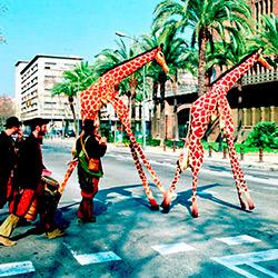 Girafes (Banyoles)